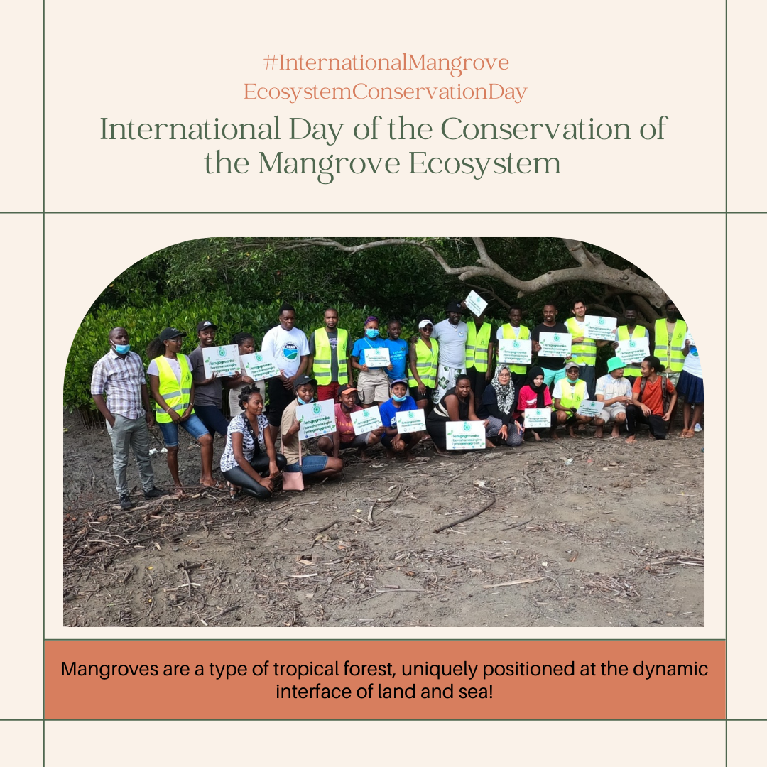 International Day of the Conservation of the Mangrove Ecosystem